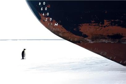 oktyabre-fotoshopa-krasivye-fotografii-neobychnye-fotografii_3267966393